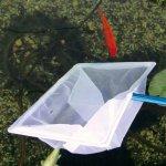 Aquarium und Teich
